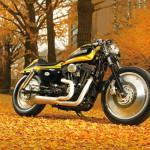 2007 Harley-Davidsion XL1200R Sporster MQQNSTER