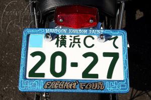 license-frame