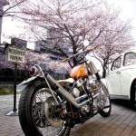 1965 Harley-Davidson Panhead Orange Krate